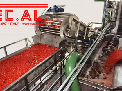 TOMATO PROCESSING LINES