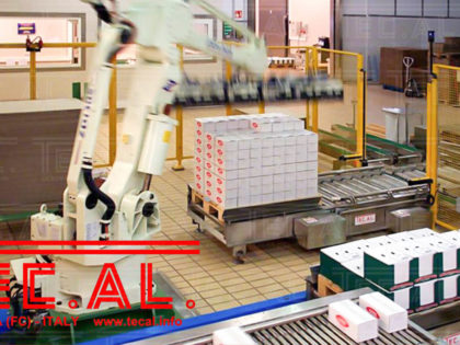 PALLETIZING LINES WITH ROBOTS