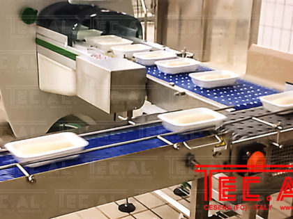 CONVEYORS FOR PIZZA DOUGH